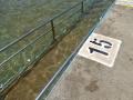 Ramp access to Collaroy Rock Pool