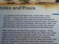 Ivo Rowe Rock Pool