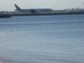 Planes landing near Kyeemagh Baths