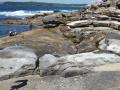 Set against the rock platform