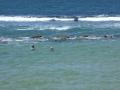 Norah Head Rock Pool