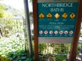 Northbridge Baths