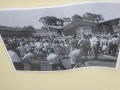 Celebrating 50 years of Oak Flats Pool