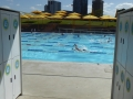 Prince Alfred Park Pool near Central Station