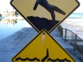 Warning signs at Queenscliff Rock Pool