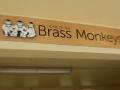 Brass Monkeys at Shelly Beach Rock Pool in Cronulla