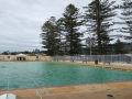 Norfolk pines look over Thirroul Olympic Pool