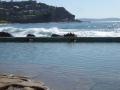 Whale Beach Rock Pool