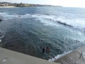 Wylie's Baths at Coogee