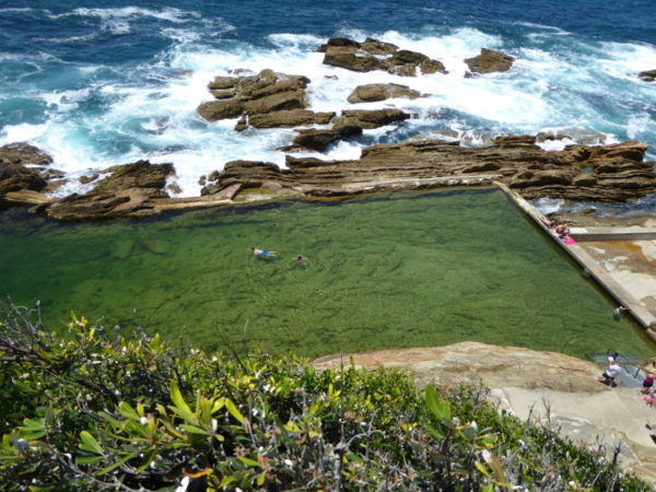 The Blue Pool goes green at Bermagui