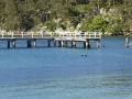 Clifton Gardens Baths in Chowder Bay