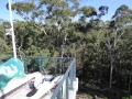 Hornsby Aquatic Centre set in bushland
