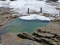 Ivo Rowe Rock Pool