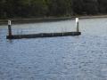Oatley Park Baths in Jewfish Bay