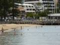 Manly Cove Swimming Enclosure