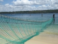 Shark net at Shark Beach near Nielsen Park