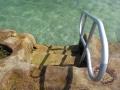 Steps into Oak Park Rock Pool