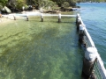 Pickering Point Baths in Seaforth NSW