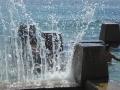 Ross Jones Memorial Pool in Coogee