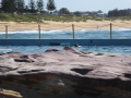 South Curl Curl Rock Pool on the rocks