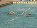 Swimmers at Thirroul Olympic Pool