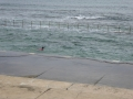 Lone swimmer at high tide