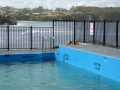 Surf coming in behind Ulladulla Sea Pool