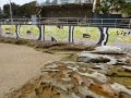 Mural by Wally Weekes Pool in North Bondi