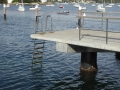 Watsons Bay Baths