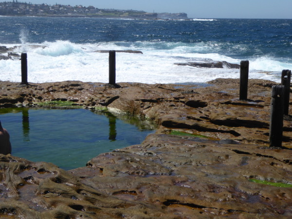 Ivo Rowe Pool at South Coogee